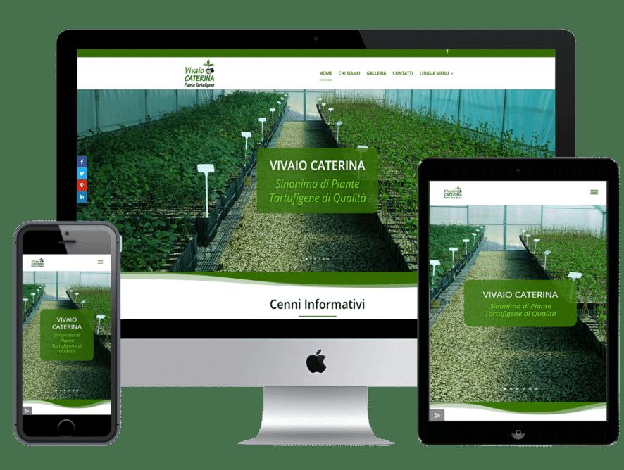 Realizzazione sito web per vivaio Caterina